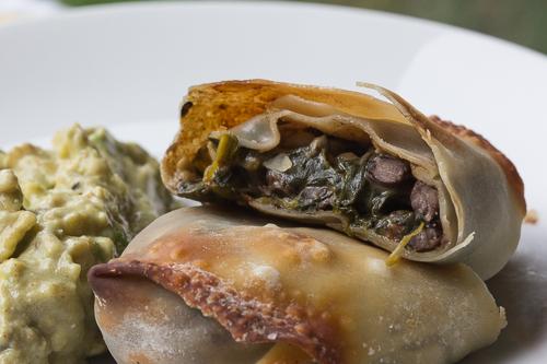 Close Up Crispy Rolls with Guacamole